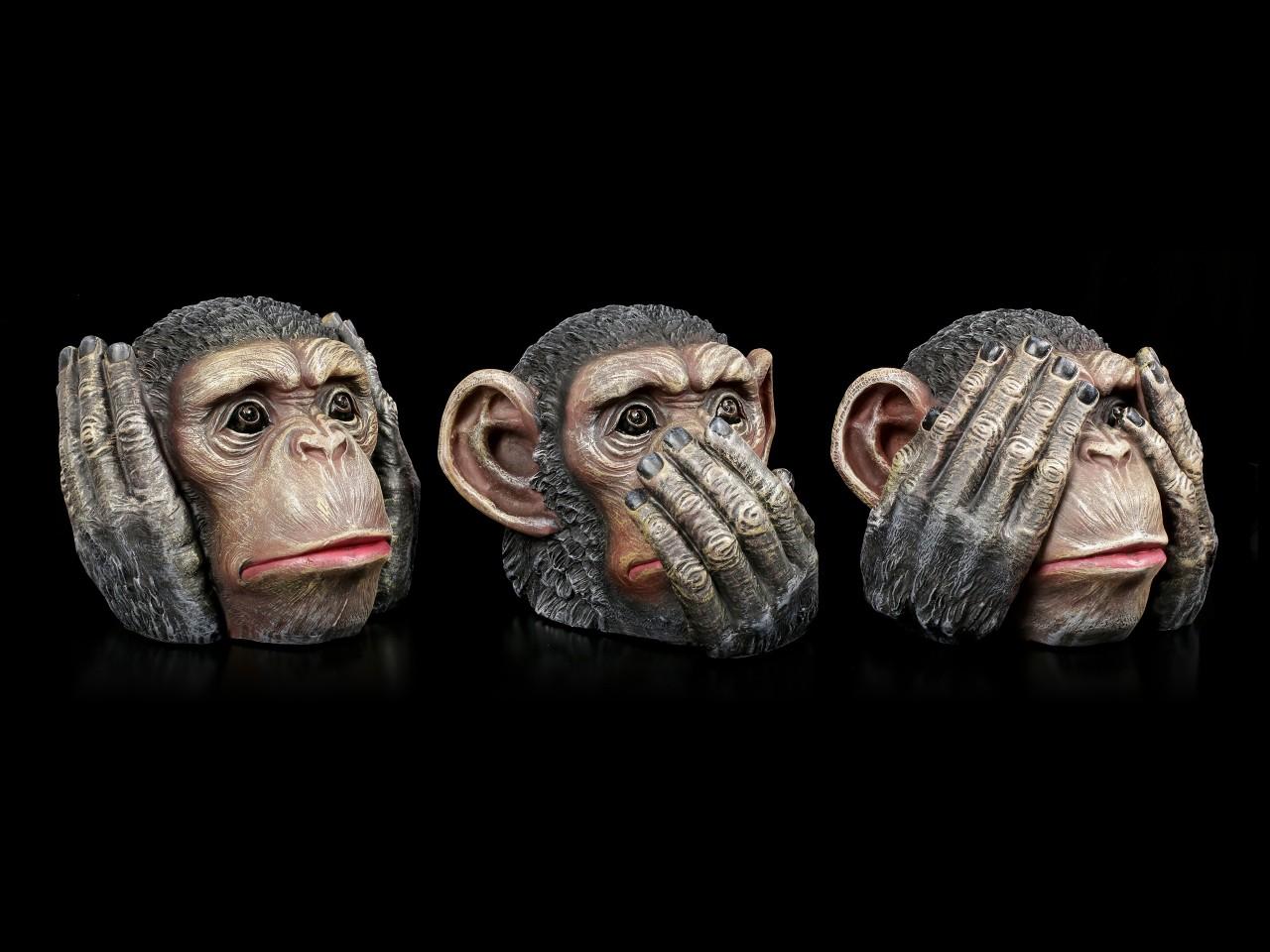 Schimpansen Köpfe - Nichts Böses