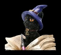 Small Witches Cat Figurine - Binx