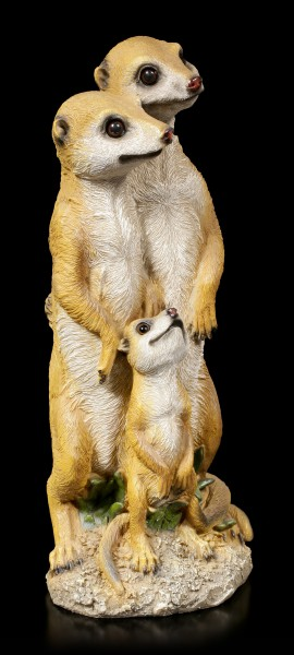 Garden Figurine - Meerkat Family looking around