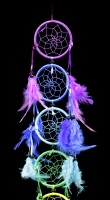Dreamcatcher - The Colours of your Dreams