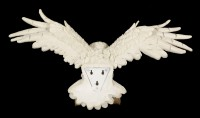 Wall Plaque White Owl - The Emissary