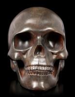 Rusty Human Skull