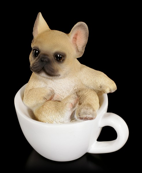 Dog in Cup mini - French Bulldog Puppy