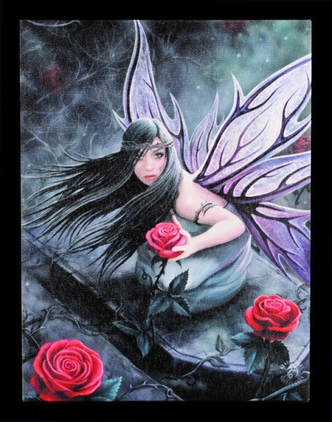 Small Canvas - Rose Fairy by Anne Stokes