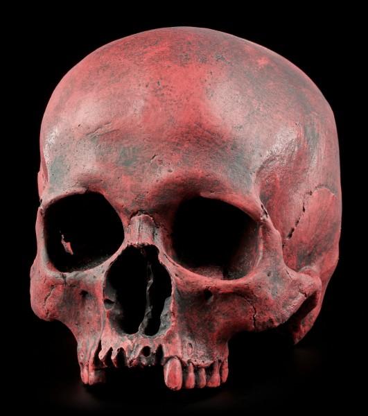 Female Replica Skull - Sagus Carmin Red - Limited Edition