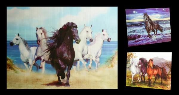 3D-Bild 3in1 mit Pferden - Freedom