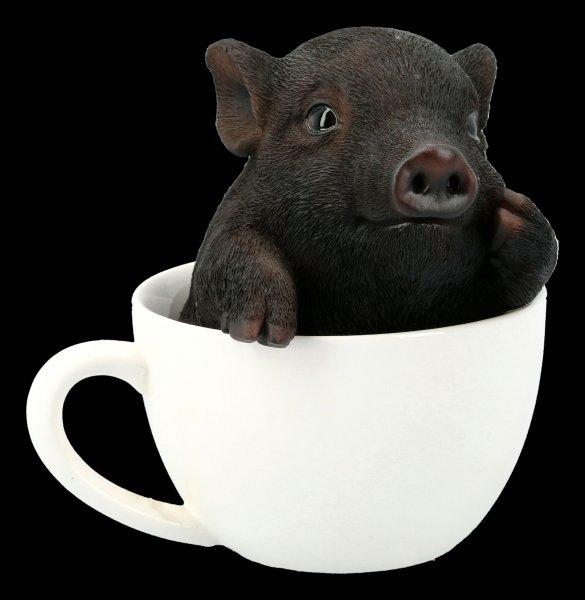 Schwarzes Schweinchen in Tasse