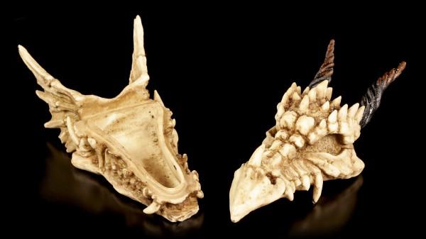 Box - Horned Dragon Skull