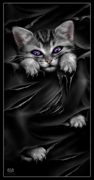 Badetuch mit Katze - Bright Eyes