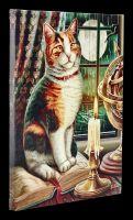 Kleine Leinwand Katze - Adventure Awaits