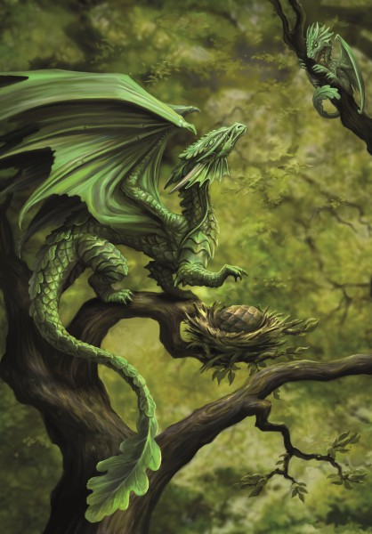 Fantasy Greeting Card - Age Of Dragons - Forest Dragon