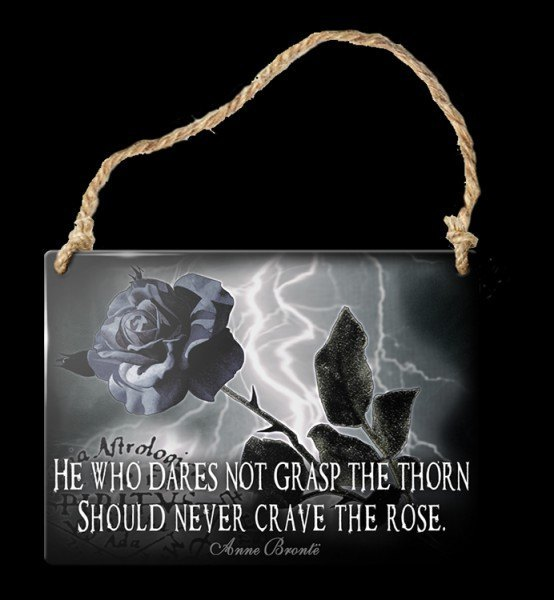 Alchemy Metal Sign small - Never Crave The Rose