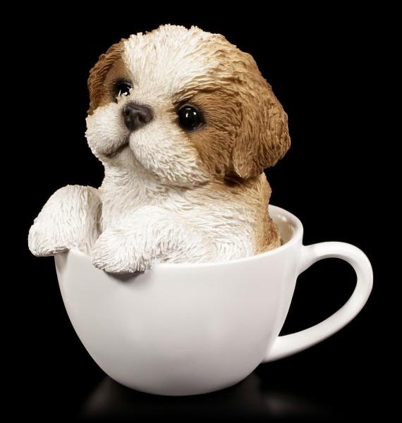 Hunde Figur - Shih Tzu Welpe in Tasse