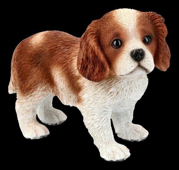 Dog Figurine - King-Charles-Spaniel Puppy