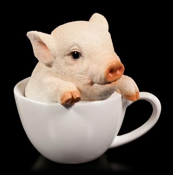 Schweinchen Figur - Ferkel in Tasse