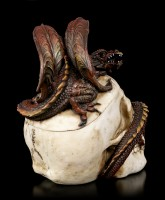 Skull Box with Dragon - Draconic Craniotomy