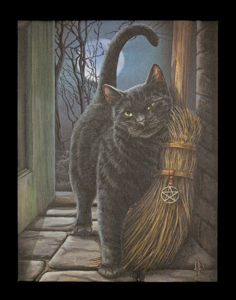 Große Leinwand mit Katze - Brush with Magic