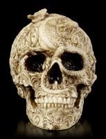 Skull - Cranial Drakos