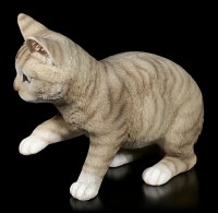 Katzen Figur - Amerikanisch Kurzhaar