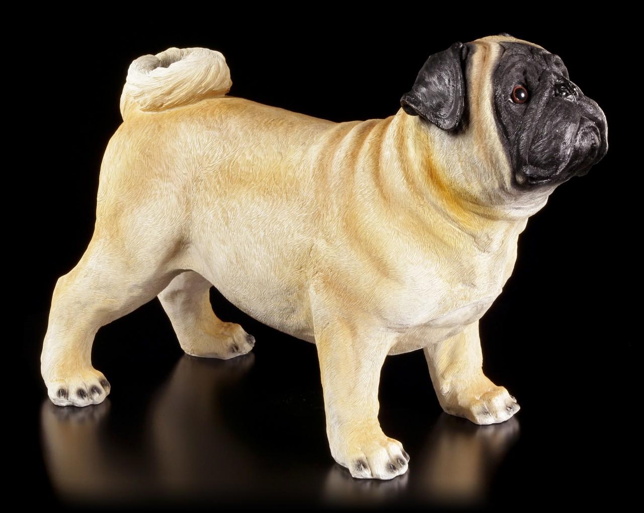 Gartenfigur Hund - Stehender Mops