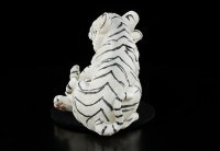 Two White Tiger Babies II