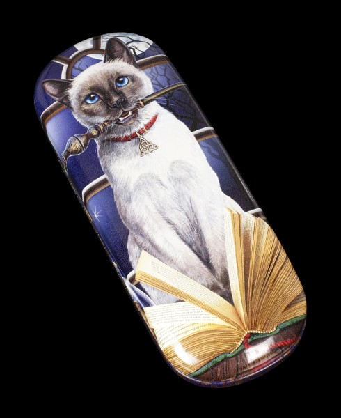 Glasses Case with Cat - Hocus Pocus