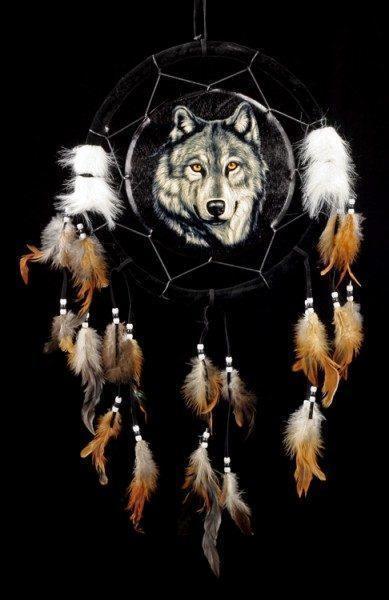 Wolf Traumfänger - Wild Wolf