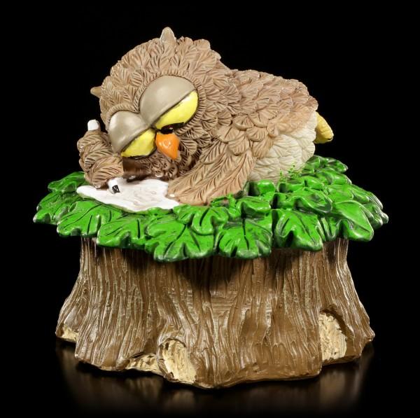 Preview: Box - Owl lies on Tree Stump