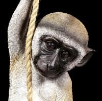Gartenfigur Affe - Grünmeerkatze am Seil hängend