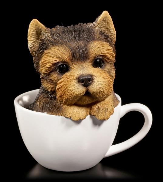 Hunde Figur - Yorkshire Terrier Welpe in Tasse