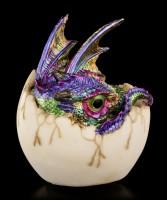 Kleine Drachen Figur bunt - Kazon in Eierschale