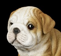 Dog Figurine - Bulldog Puppy
