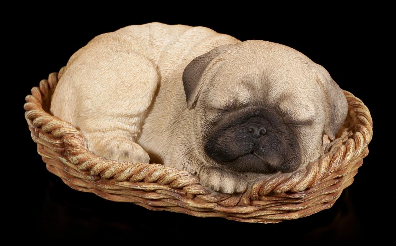 Dog in Basket Figurine - Pug