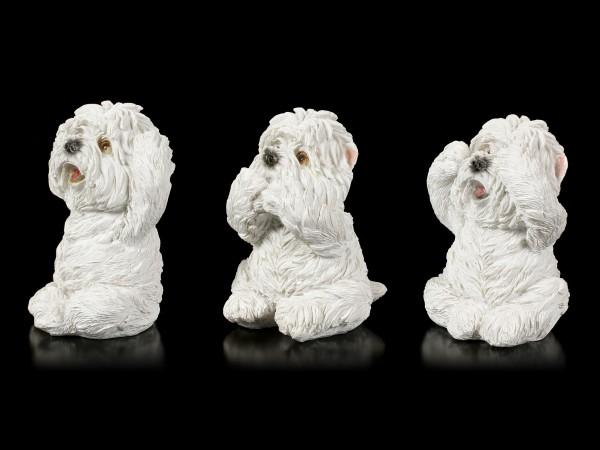 Drei weise Hunde Figuren - Westies Nichts Böses