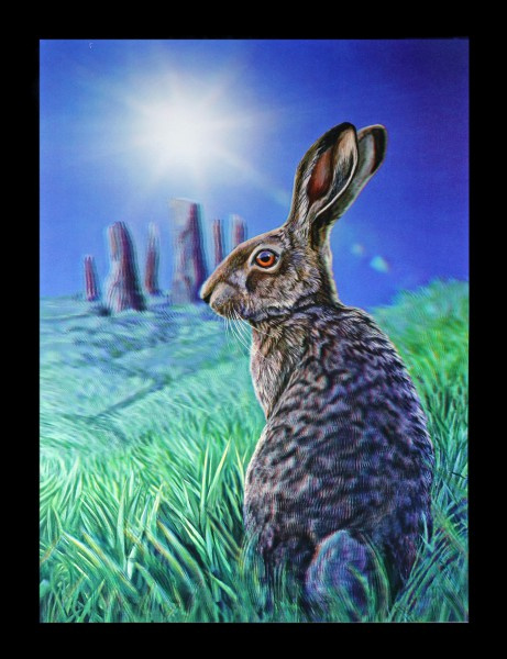 3D Picture with Hare - Solstice