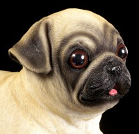 Garden Figurine Dog - Pug Puppy