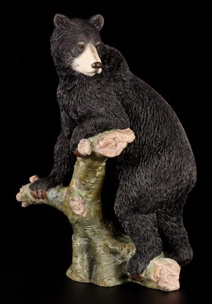 Amerikansicher Schwarzbär - Figur stehend