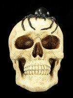 Spardose - Totenkopf mit Spinne