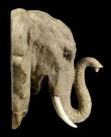 Elefanten Kopf Wandrelief