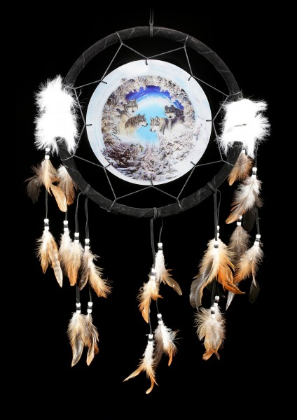 Dreamcatcher with 3D Picture - Winter's Call