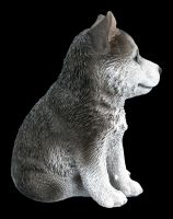 Hunde Figur - Husky Welpe