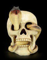 Skull - Cobra winds through the eye