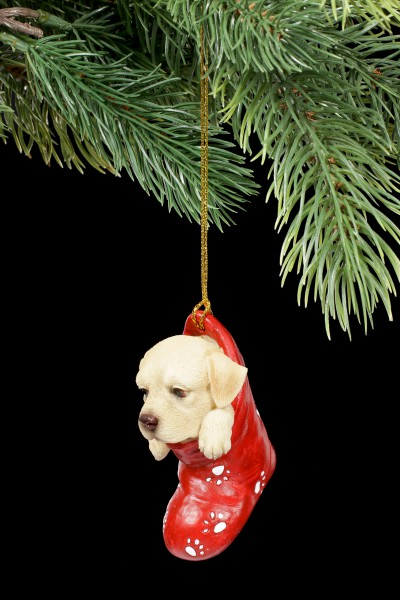 Christmas Tree Decoration Dog - Labrador in Stocking