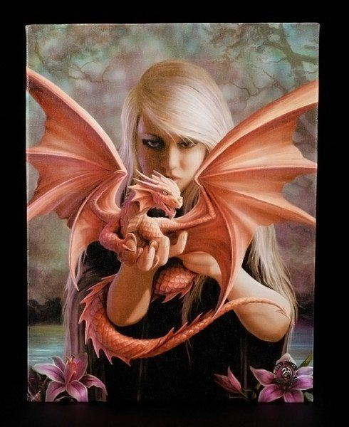 Small Canvas - Dragonkin by Anne Stokes