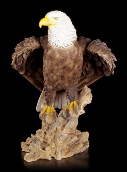Gartenfigur - Weißkopfseeadler