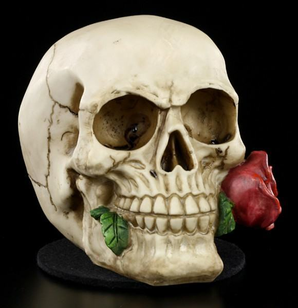Skull - Rose From the Dead