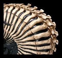 Totenkopf Figur - Spine Head by James Ryman