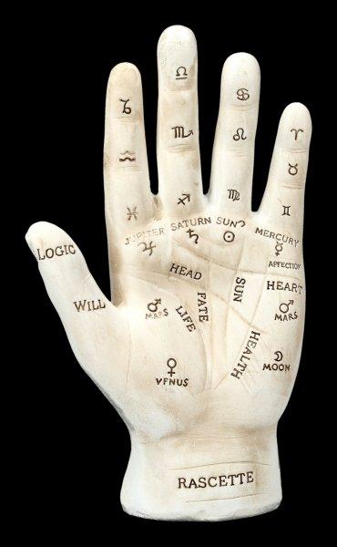 Palmistry Hand - white