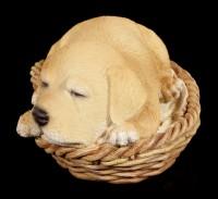 Dog in Basket Figurine - Labrador