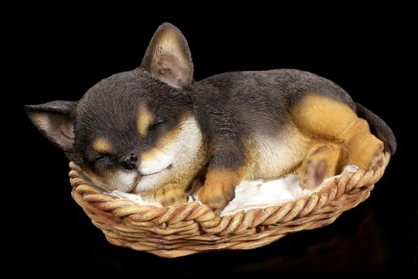 Hund in Körbchen Figur - Chihuahua